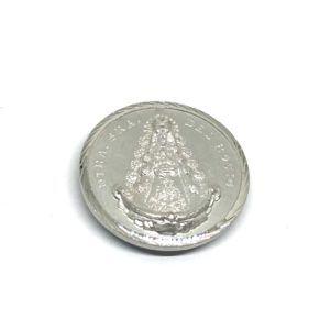 Placa coche Virgen del Rocío plateada con imán y/o adhesivo, en color: Plata